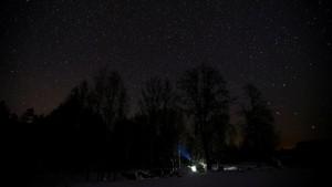 FOTO: Menyendiri di Hutan Belarusia
