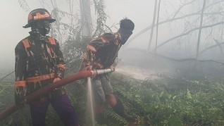 Polisi Temukan Indikasi Kesengajaan Karhutla di Tol Palindra