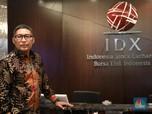Nafsu IPO: Antara Jargon & Cabutnya Investor Asing