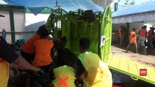 VIDEO: Cara Cepat Potong Sapi Untuk Kurban