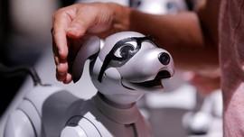 Qualcomm Sediakan Platform untuk Kembangkan Robot