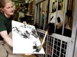 Keren! Hasil Karya Panda 'Sang Pelukis' Dijual 490 Euro