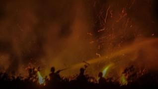 Lahan Sumatra Selatan Terbakar 37 Ribu Hektare Sepanjang 2018