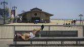 Pemandangan pria bertelanjang dada biasa ditemui di New York saat musim panas melanda. (Drew Angerer/Getty Images/AFP)