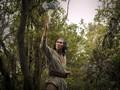 Pencabutan DNI, 'Vitamin' dari Jokowi untuk Film Indonesia