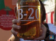 B20 Diluncurkan! Besok, Solar Sudah Campur Minyak Sawit 20%