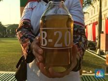 B20 untuk Pembangkit Listrik Belum Capai Target