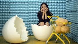 FOTO: Pesta Selfie di Rumah Telur