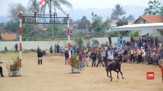 VIDEO: Saptonan, Tradisi Kuningan Sebagai 'Kota Kuda'