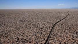FOTO: Surutnya Danau Kami, Kekeringan Kembali Landa Poopo