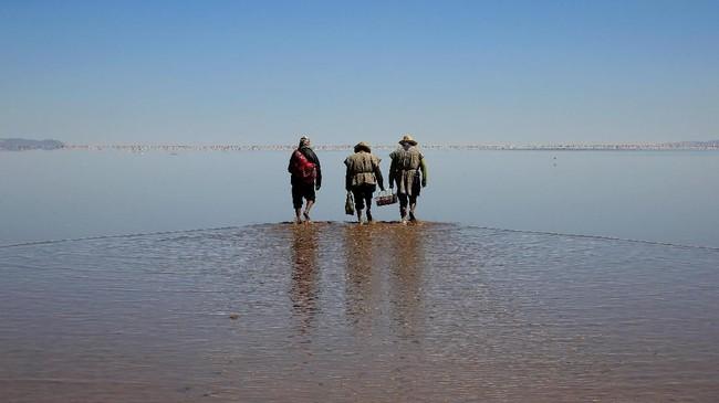 Sekitar 500.000 jiwa yang tinggal di sekitar sungai telah meninggalkan rumah mereka. Mereka yang memutuskan untuk pindah tidak hanya nelayan namun juga para petani yang bertenak domba dan alpaca. Sebanyak 3000 orang memilih untuk bertahan dan pemerintah memberi bantuan untuk mereka. (REUTERS/David Mercado)