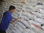 Jokowi Minta Darmin Tengahi Buwas & Enggar Soal Impor Beras