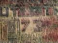 Senam Gemu Famire, Berawal dari Oleh-oleh Berujung Rekor MURI