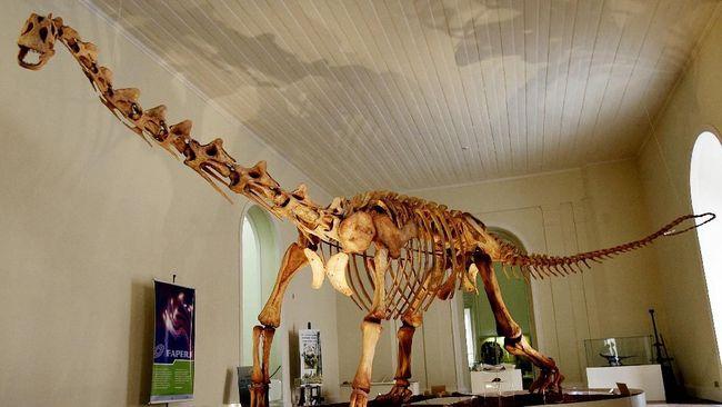 Jejak Dunia Dinosaurus Ditemukan di Australia