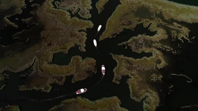 Kapal yang membawa wisatawan ini biasanya melintasi sungai Dalyan untuk menuju pantai Iztuzu. Penyu, khususnya bayi penyu, adalah hewan yang sangat sensistif terhadap bunyi. Bebunyian yang riuh dapat mengakibatkan penyu kehilangan arah dan tersesat.