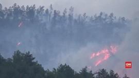 Kebakaran di Gunung Raung, 7 WN Singapura Terjebak Semalaman
