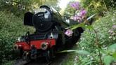 Untuk menghidupkan kembali lokomotif ini banyak pihak yang terlibat, termasuk masyarakat Inggris yang ingin bernostalgia.