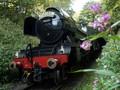 FOTO: Melintasi Inggris bersama Kereta Legendaris
