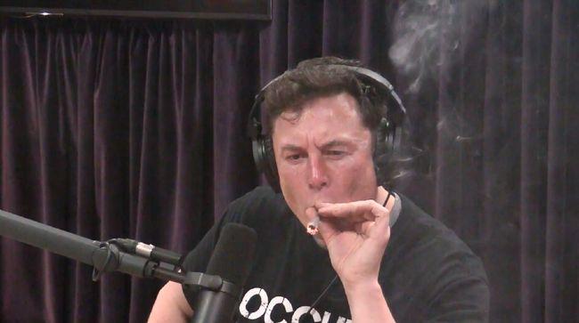 Apa Rasanya Pakai Nomor Hape Lama Elon Musk, Banya
