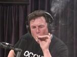 Apa Rasanya Pakai Nomor Hape Lama Elon Musk, Banyak Diteror?
