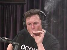 Elon Musk Isap Ganja Depan Publik, Saham Tesla Rontok