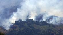 Kebakaran Melanda Hutan Lereng Gunung Sumbing