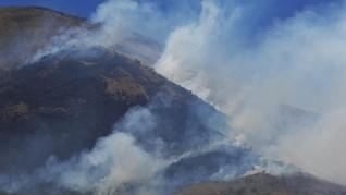 Hampir 2 Pekan, Kebakaran di Gunung Ciremai Belum Bisa Padam