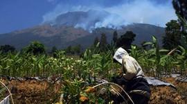 Sisir Api di Gunung Sumbing, BNPB Kerahkan 100 Personel