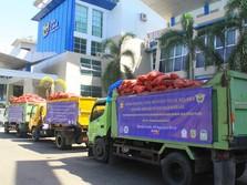 Bea Cukai Hibahkan Bawang Merah Selundupan Asal Malaysia