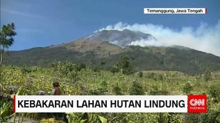 Pemadaman Kebakaran Hutan Lindung di Temanggung