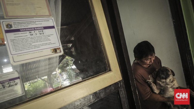 Berdasarkan Pergub DKI Jakarta Nomor 199 Tahun 2016 yang mengatur soal pengendalian penyakit rabies, Pemerintah Provinsi DKI Jakarta membuat peraturan yang mewajibkan setiap hewan peliharaan, terutama anjing, dipasangi microchip, Jakarta (13/8). (CNN Indonesia/ Hesti Rika)