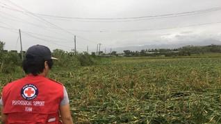 Topan Mangkhut, Petani Filipina Pertaruhkan Nyawa Jaga Ladang