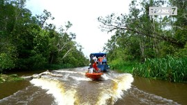VIDEO: Jejak Petualang Weekend Episode Kalimantan Tengah
