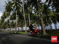 BNPB Minta Pemda Tanam Pohon di Pantai Selat Sunda
