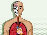 Penyakit Lupus: Apa Itu, Penyebab & Cara Mengobati
