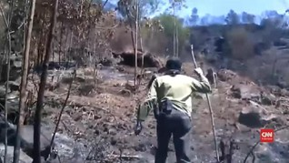 VIDEO: Penelusuran Bekas Kebakaran Hutan di Gunung Sindoro