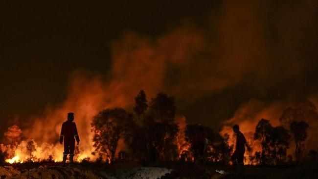 Petugas dari BPBD Kabupaten Ogan Ilir (OI) mencari akses menuju lokasi kebakaran untuk memadamkan kebakaran lahan yang terjadi di Jalan Lintas Timur Palembang-Indralaya, Ogan Ilir (OI), Sumatera Selatan, Senin (17/9). (ANTARA FOTO/NOova Wahyudi)