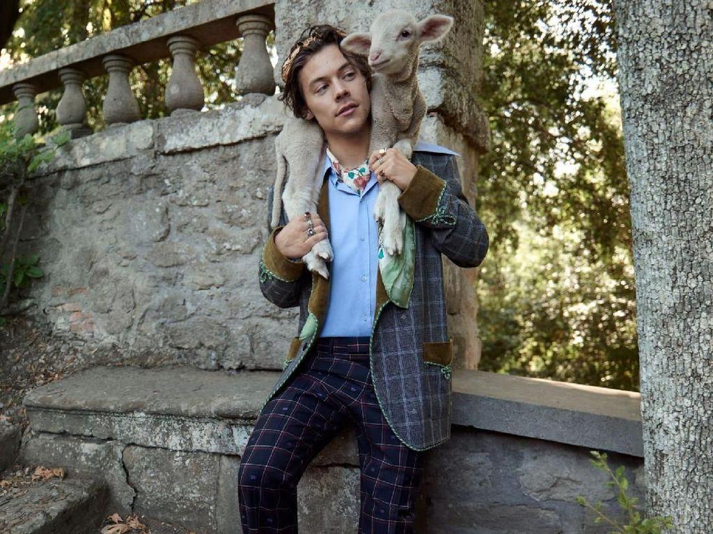 Gaya Necis Harry Styles yang Mesra-Mesraan dengan Babi di Iklan Gucci