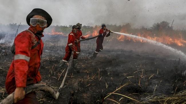 Petugas dari BPBD Kab Ogan Ilir (OI) melakukan pemadaman kebakaran lahan di Sungai Rambutan, Indralaya Utara, Ogan Ilir (OI), Sumatera Selatan, Selasa (18/9). (ANTARA FOTO/Nova Wahyudi)