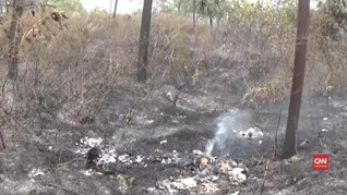 VIDEO: Penyekatan Hutan Lindung Kareumbi yang Terbakar