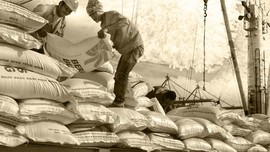 Polemik Beras Impor di Negara Agraris