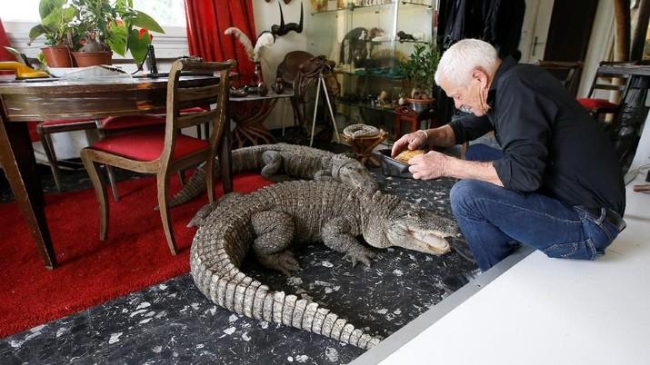 Mengerikan, Pria Ini Tinggal Serumah dengan 400 Reptil