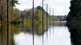 Badai Florence telah menewaskan sedikitnya 36 orang, termasuk 27 orang di North Carolina, 8 orang di South Carolina, dan satu di Virginia. (Reuters/Jonathan Drake)