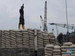 Gempuran Semen China, Pekerja Pabrik Semen Ngadu ke Istana