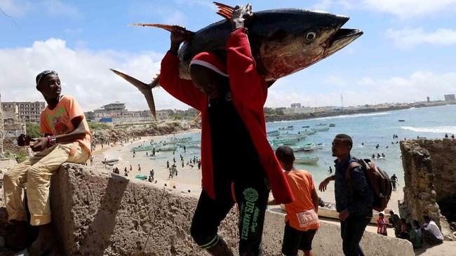 Seorang nelayan membawa ikan tangkapannya di dekat sebuah dermaga mancing di Mogadishu, Somalia. (Reuters/Feisal Omar)