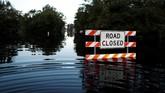 North Carolina dikenal sebagai daerah peternakan babi. Banjir besar ini telah menyapu 21 tempat pengolahan limbah kotoran babi dan meningkatkan risiko pencemaran air bersih dan penyebaran bakteri salmonella di kawasan itu. (Reuters/Randall Hill)