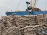 Alasan Semen Indonesia Akuisisi Holcim Rp 13,47 T