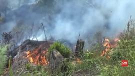 VIDEO: Kebakaran Lahan di Mamasa
