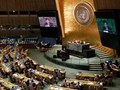 PBB, Uni Eropa Siap Bantu Indonesia Soal Gempa Palu Donggala