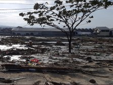 Simak Kondisi Terkini Pesisir Kota Palu Pascagempa & Tsunami!